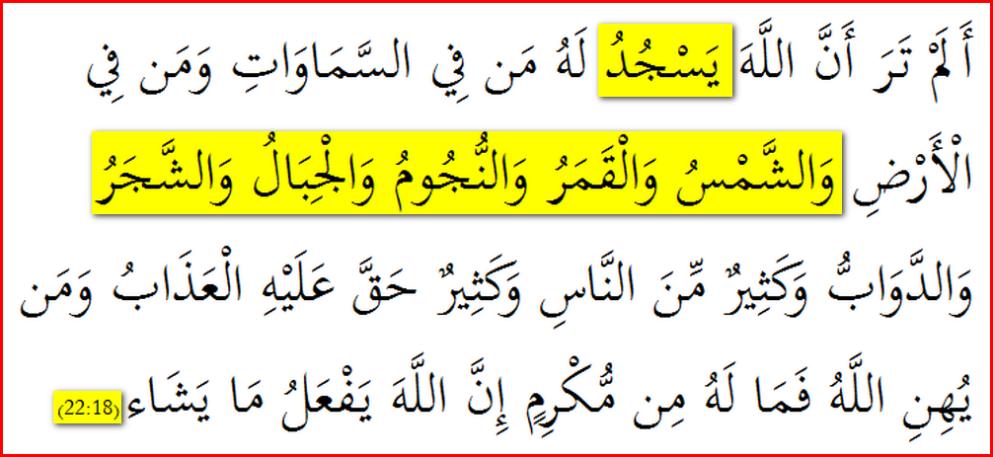 Quran22_18_OnlyVerse