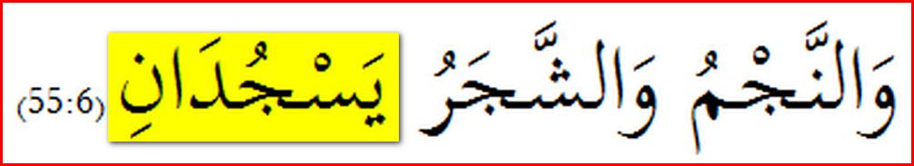 Quran55_OnlyVerse