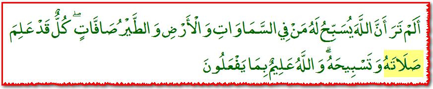 Quran_24_41