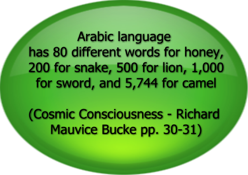 ArabicBigLanguage