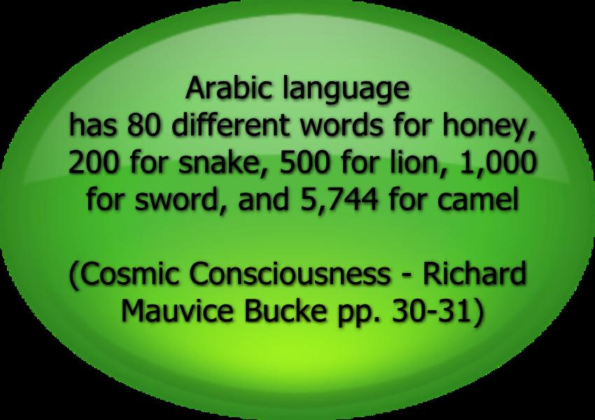 ArabicBigLanguage
