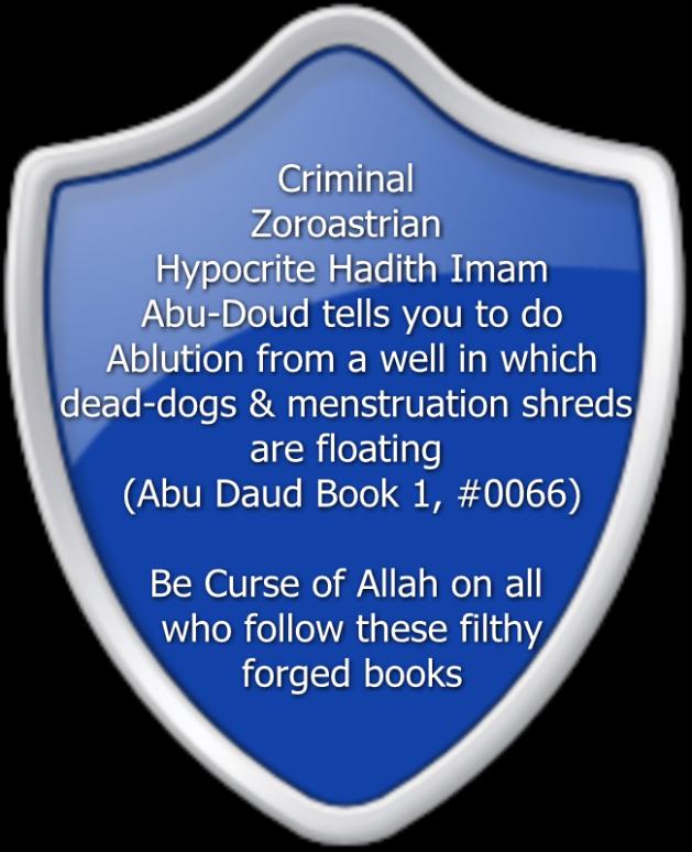 AbudaudDeadDogs2