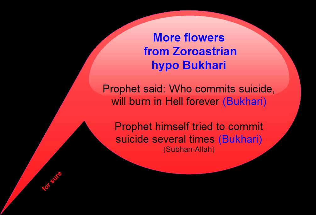 BukhariSuicideLie1