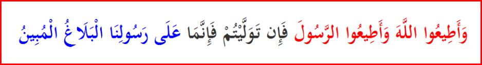 Quran64_12Prophet